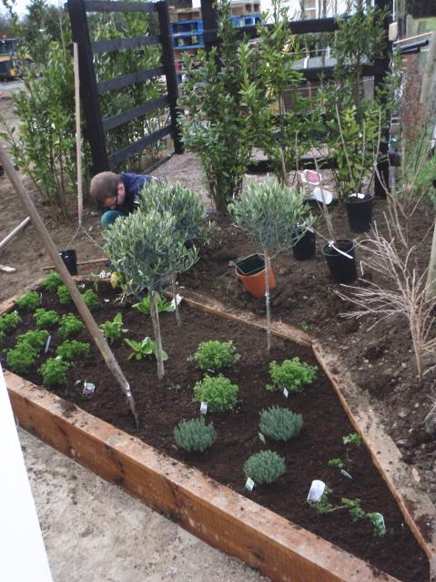 herb garden layout...