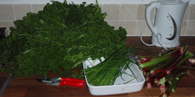 herb garden harvesting - peter donegan file