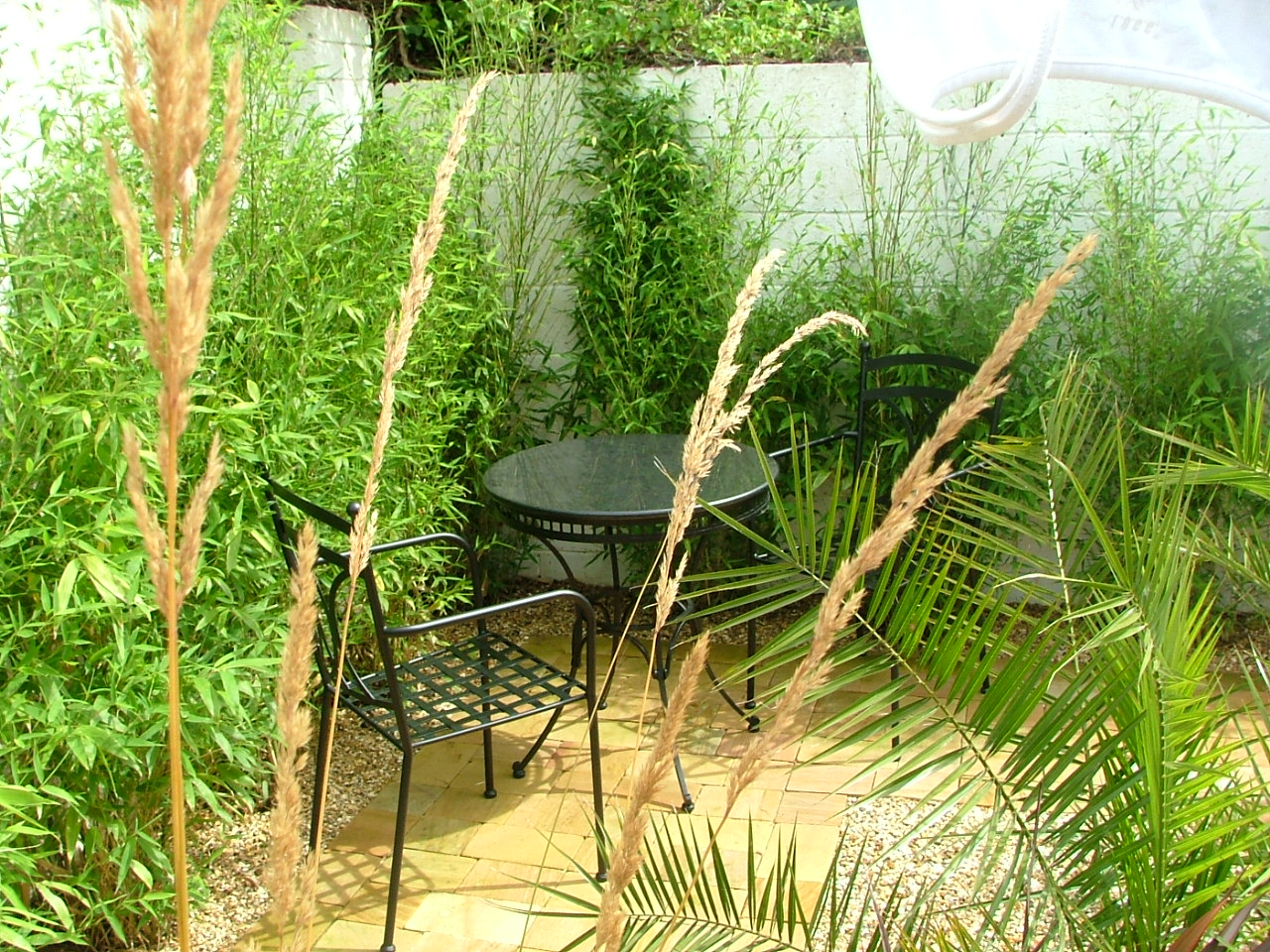 gat the garden in groove...