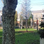 peter-donegan-landscaping-cork-042
