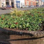 peter-donegan-landscaping-cork-059