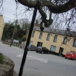 tree-supports seamus ennis centre naul