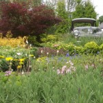 no-rubber-soul-car-garden-peter-donegan landscapes
