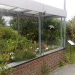 osnabruck-university and botanical-gardens-