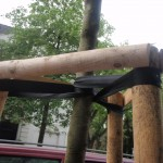 street tree supports strapping