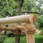tree tripple staking and rope support tying