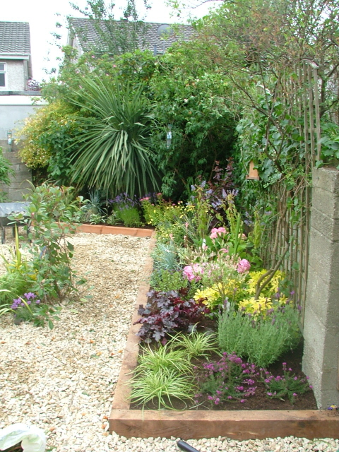 small garden pebble and pretty planting peter donegan
