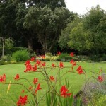 gardens-of-brackenstown-house-
