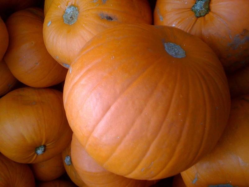 pumpkin-jack-o-lanten-2