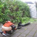hedge cutting