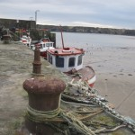 loughshinny beach (23)