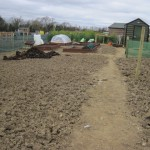 donabate allotments (10)