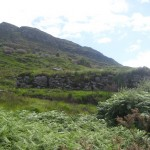 ladies view killarney (5)