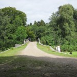 lough key forest  (64)