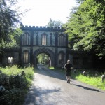 lough key forest  (92)