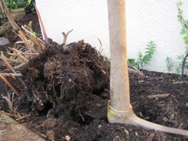 The garden sodcast episode 24 peter donegan for Gardening tools dublin