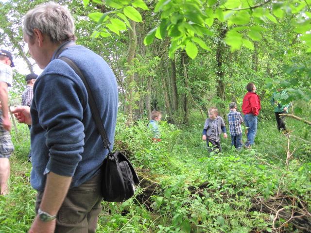 donegan hedgerow walk