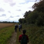 hedgerow walk