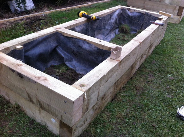 raised timber beds
