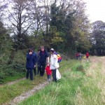 hedgerow walk peter donegan (10)