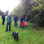 hedgerow walk peter donegan (4)