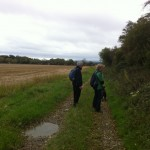hedgerow walk peter donegan (9)