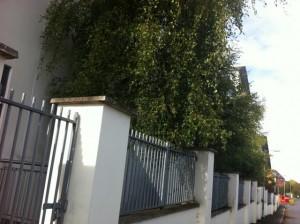 dublin gardening services