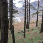 wicklow mountain wild camping (69)