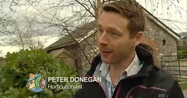 peter donegan #ettg