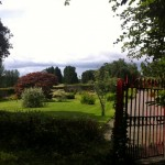 tullynally castle gardens (8)