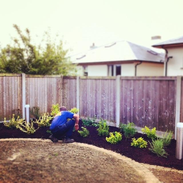 Landscape Gardeners Dublin Irish landscaping and gardening trends peter donegan landscaping i workwithnaturefo