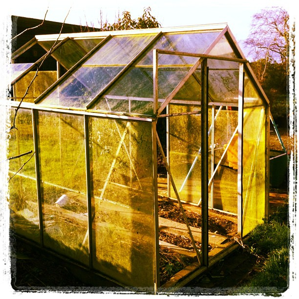 old glasshouse