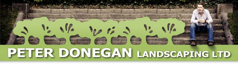 donegan landscaping web