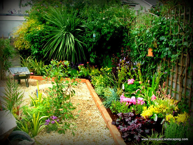 Landscaping dublin small back garden peter donegan for Landscaped back gardens