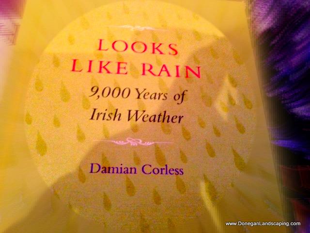 9000 years of irish weather