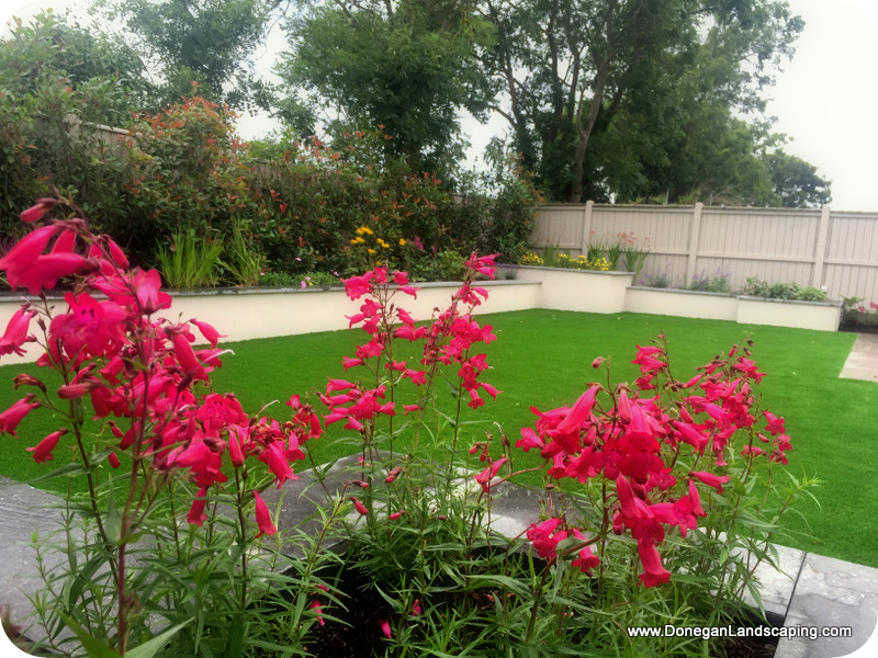 peter donegan, landscaping dublin (2)
