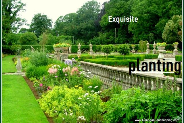 Peter Donegan Landscaping and Garden Design - Peter ...