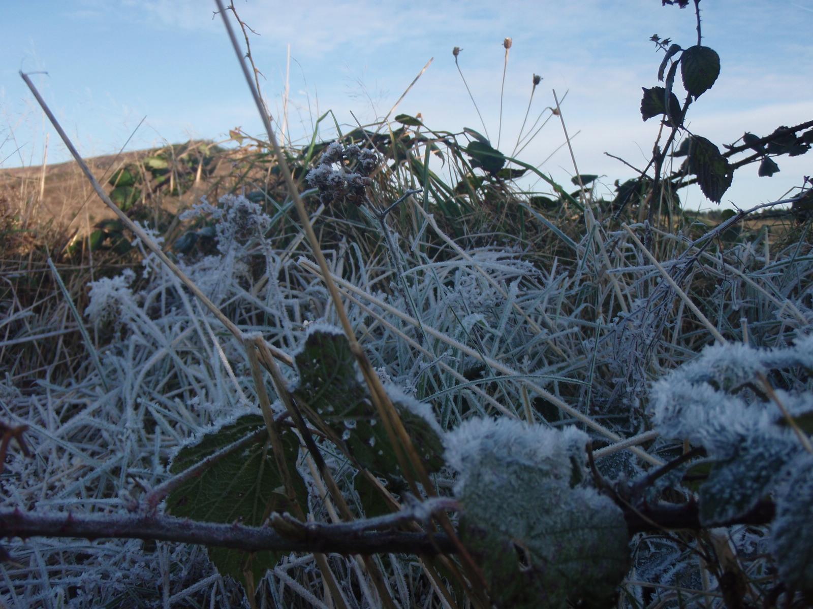 a little frost...