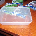 plastic tray to grow seeds