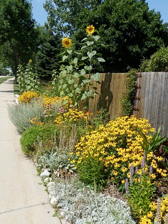 sidewalk-view-2009-3