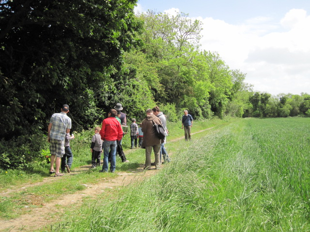 peter donegan hedgerow walk