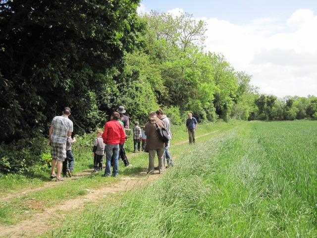 peter donegan hedgerow walk