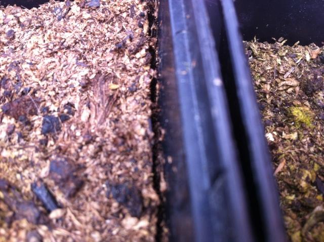 compost dry