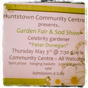 huntstown community centre garden fair (11)