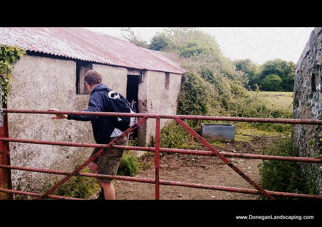 peter-donegan-hedgerow walk
