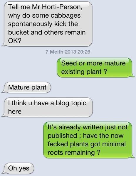 plant problem diagnosis