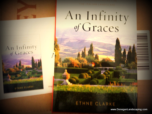 an infinity of graces
