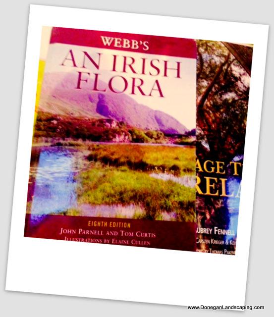 an irish flora