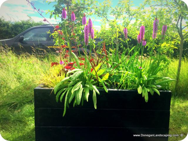 hand made, garden planters, dublin