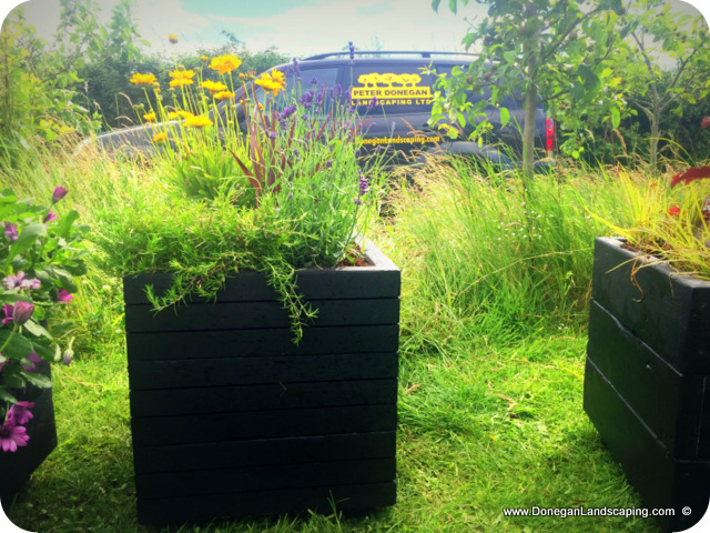 hand made, garden planters, dublin (2)